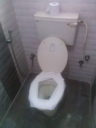 Toilet paper - Toilet paper is also used for spreading on seat before sitting