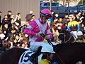 Tokyo Daishoten Day at Oi racecourse (31834637182).jpg