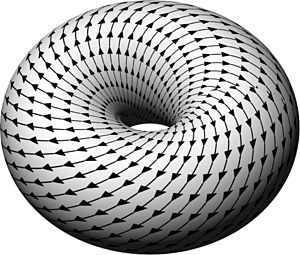Rotations in 4-dimensional Euclidean space - A 4D Clifford torus stereographically projected into 3D looks like a torus, and a double rotation can be seen as in helical path on that torus. For a rotation whose two rotation angles form a rational number, the paths will eventually reconnect, while for an irrational ratio they will not. An isoclinic rotation will form a Villarceau circle on the torus, while a simple rotation will form a circle parallel or perpendicular to the central axis.