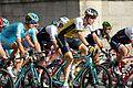 Tour de France 2016 Stage 21 Paris Champs-Elysées (28265135350).jpg