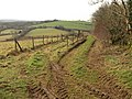 Track near Belsford - geograph.org.uk - 1160751.jpg
