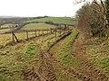 Track near Belsford - geograph.org.uk - 1160751.jpg