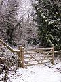 Track through the Snow - geograph.org.uk - 136730.jpg