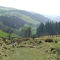 Trackway towards Cwm Rhisglog, Carmarthenshire - geograph.org.uk - 1228222.jpg