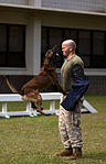 Training Unleashed, Marine dog handler shares bond with canine 131015-M-NP085-006.jpg