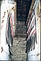 Tramstelplaats - 343953 - onroerenderfgoed.jpg