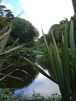 Trebah Gardens1
