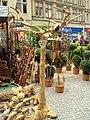 Tree, street stall, Sheffield - DSC07463.JPG