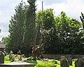 Tree felling, St Mary's Churchyard, Linton - geograph.org.uk - 831960.jpg