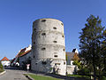 Trochtelfingen-Hoher Turm105981.jpg