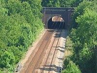 Tunnel de beauval.jpg