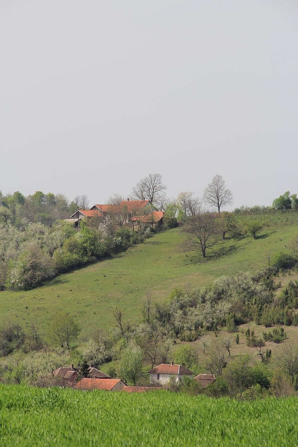 Tupanci - opština Valjevo - zapadna Srbija - panorama 1