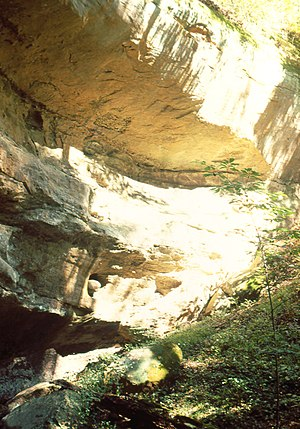 English: Turtlehead Cave in Strouds Run State Park