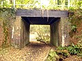 Underpass beneath former railway line, New Forest - geograph.org.uk - 98877.jpg