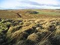 Upland landscape - geograph.org.uk - 295188.jpg