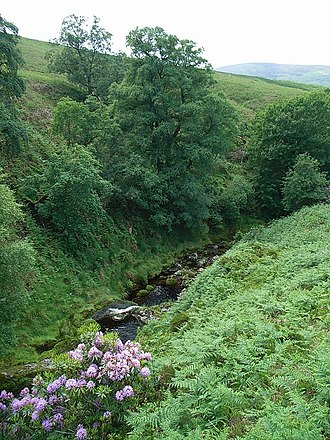 River Dodder - Image: Upper Dodder
