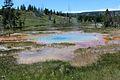 Upper Geyser Basin Yellowstone 15.JPG
