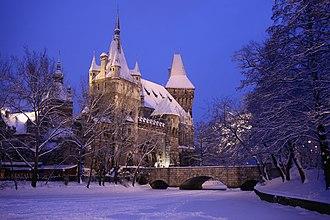 Vajdahunyad Castle - Image: Vajdahunyad vára (16291. számú műemlék) 14
