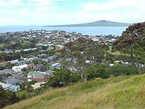 Looking east from Mount Victoria towards Rangitoto Island.