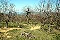 Via degli Dei, Monzuno, Loc. La Collina 05.jpg