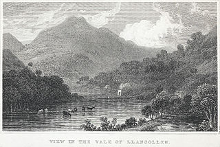 View in the vale of Llangollen, Denbighshire