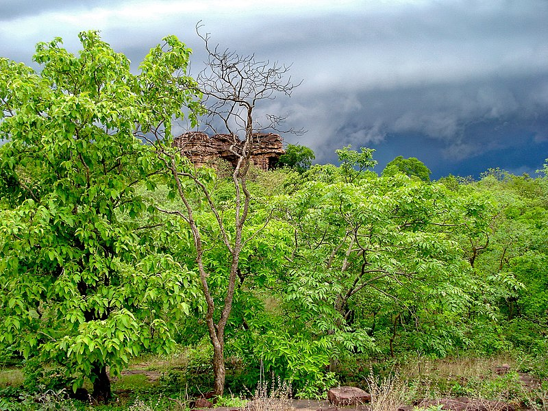 चित्र:View of Bhimbetka, World Heritage site, Bhopal.jpg