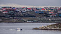 View of Stanley, Falkland Islands.jpg