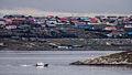 View of Stanley, Falkland Islands.jpg