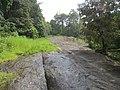 Views from Iritty - Virajpet road (7).jpg