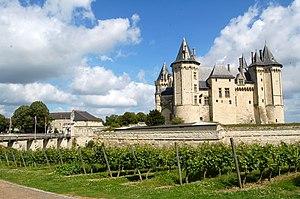Loire Valley (wine) - Vineyard in the Loire Valley near Saumur