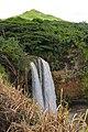 Wailua Falls, Maalo Rd, Kapaa (503175) (16531358353).jpg