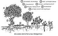 Waldgartenprinzip.jpg