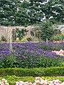 Walled Garden - geograph.org.uk - 1029177.jpg