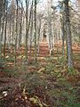 Wandern im November in Todtmoos - panoramio (1).jpg