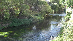 River Wandle in Wandsworth Town Centre