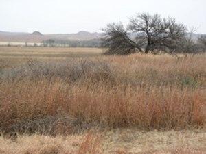 Washita Battlefield National Historic Site - Washita Battlefield