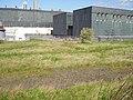 Wasteland behind the power station - geograph.org.uk - 164377.jpg