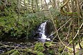 Waterfall, Helsey Lane, Rathmell - geograph.org.uk - 158230.jpg