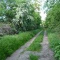 Weg zum Freudenbergerhof - panoramio (1).jpg