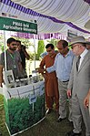 Welcoming Olives to Punjab! USAID and Punjab Agriculture Department Advance the Emerging Olive Sector in Potohar (36427296455).jpg