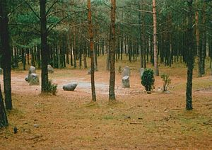 Stone circle (Iron Age) - A stone circle in the area of northern Poland  where the Goths initially settled after emigration from Scandza.