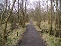 West Highland Way - geograph.org.uk - 1746840.jpg