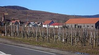 Wettolsheim Commune in Grand Est, France