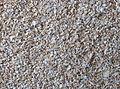 Wheat bran, tarwe zemelen.jpg