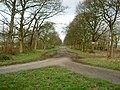 Wide Driveway near Brimstage. - geograph.org.uk - 681505.jpg