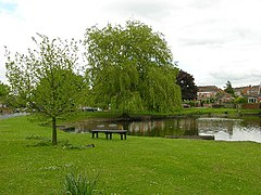 Wigginton village pond.jpg