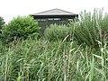 Wildside Hide among the reeds - geograph.org.uk - 1446737.jpg
