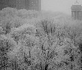 Winter in New York. Explored. - Flickr - ravalli1.jpg