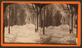 Winter view of Taconic Hotel, Manchester, Vt, by Allen, H. S. (Henry S.).png