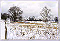 Winter wonderland (5258161408).jpg